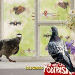 Podtrash 503 - Birdemic: Choque e Terror